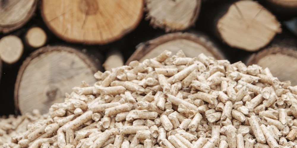 What is Biomass? A greener, cleaner energy source.